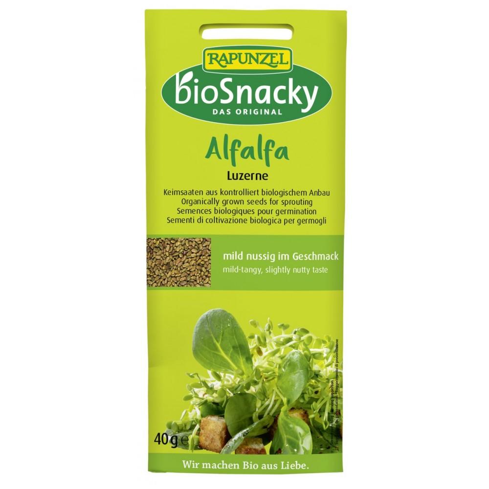 Seminte de lucerna ecologica pentru germinat